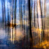 A path reflecting