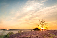 posbanksunrise-9515-Edit