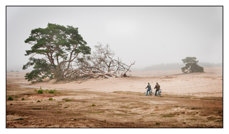 Hogue Veluwe. Two lone cyclists in the mist